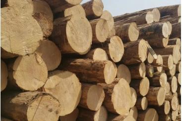 建筑木方13