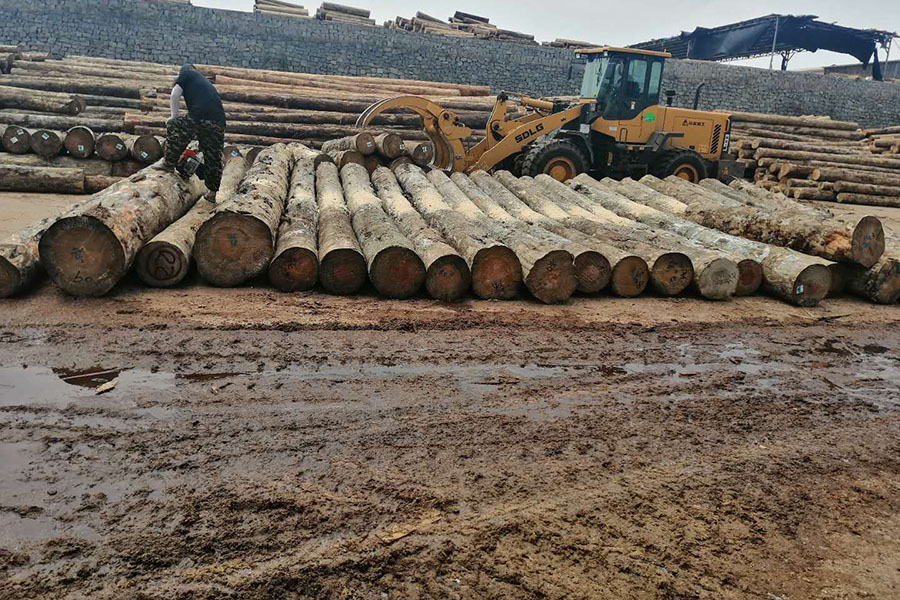 建筑木方,日照木方,建筑木方厂家
